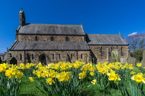 Side view of Holy Cross, on a beatiful sunny day, with daffodils in the foreground, in full bloom.